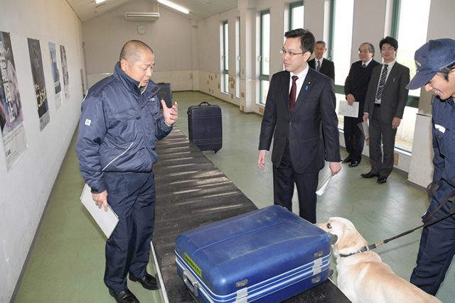 関西国際空港で麻薬探知犬の検査訓練を視察する杉久武財務大臣政務官